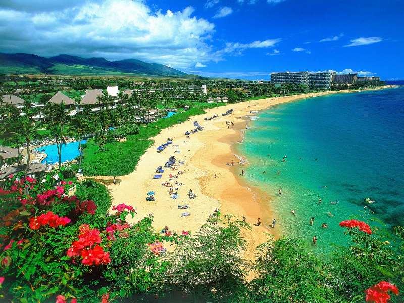 Het strand van Hawai