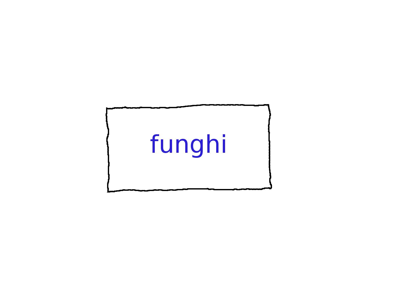 Wiki pagina met naam Funghi